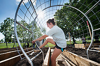 Mackenzie Nelson, a junior landscape architecture major from Holly Springs, makes adjustments to the pipe and wire trellis she designed for the Mississippi State Community Garden. Located south of the Newell-Grissom Building and adjacent to the Department of Landscape Architecture on Stone Boulevard, the garden offers a unique way to promote sustainability, meet others interested in local food and improve campus life. <br />