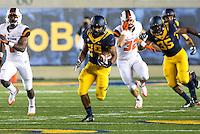 Saturday, October 19, 2013: CAL Football vs Oregon State at Memorial Stadium, Berkeley, California  Oregon State defeated California 49 -17