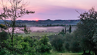 "Taken from our ""agroturismo,"" Casa Sola, In Tuscany, just south of Florence.  The village of San Donato is outlined on the horizon. A layer of mist blankets the vineyard in the center of the frame."