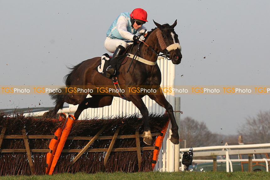 Hobb's Dream ridden by Andrias Guerin jumps during the Drive In Movie 18th August Handicap Hurdle - Horse Racing at Plumpton Racecourse, East Sussex - 12/03/12 - MANDATORY CREDIT: Gavin Ellis/TGSPHOTO - Self billing applies where appropriate - 0845 094 6026 - contact@tgsphoto.co.uk - NO UNPAID USE.