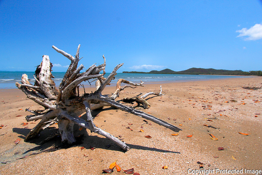 Seaforth Beach near Mackay, Queensland