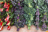 USA, Oregon, Ashland, Barking Moon Farm Kale for sale at the Rogue Valley Growers and Crafters Market