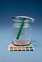 PH PAPER INDICATOR IN SOLUTIONS COMPARED (2 of 2)<br />