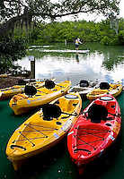 TAE- Grande Tours Kayaking, Placida FL 5 12