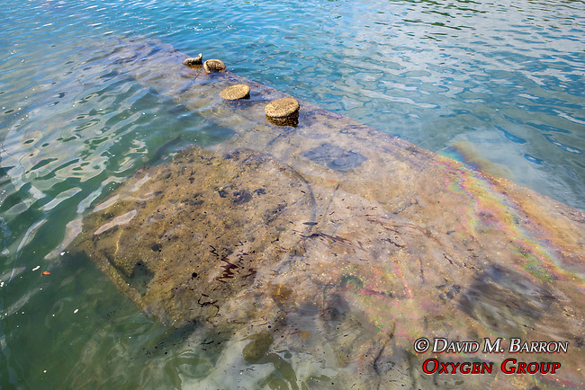 Oil Seepage From the USS Arizona Memorial, Pearl Harbor