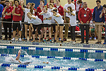 BIRMINGHAM, AL - MARCH 11: Drury fans cheer on one of their own, Ella Bryan during the women's 1650 Yard Freestyle during the Division II Men's and Women's Swimming & Diving Championship held at the Birmingham CrossPlex on March 11, 2017 in Birmingham, Alabama. (Photo by Matt Marriott/NCAA Photos via Getty Images)