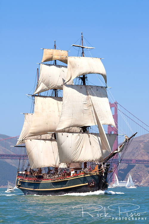 The tall ship Bounty sails into San Francisco Bay during the Parade of Ships as part of the 2008 San Francisco Festival of Sail. Built in 1960 for the MGM studios movie 'Mutiny on the Bounty' starring Marlon Brando the ship was constructed from the original ships drawings and built the same way as the original Bounty was 200 years earlier. Bounty was lost during Hurricane Sandy in October of 2012 off of the coast of North Carolina.