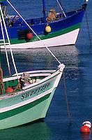 Europe/France/Bretagne/22/Côtes d'Armor/Erquy: Bateaux de pêche au port