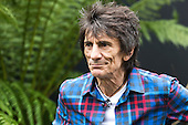 London, UK. 4 July 2016. Rolling Stones musician Ronnie Wood. Press day at the RHS Hampton Court Flower Show. The show is open to the public from 5 to 10 July 2016.
