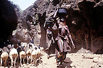 A Turkana women - collecting  water  near Lokitaung...Northern Kenya.....