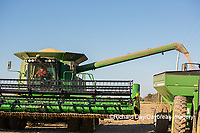 63801-07410 Soybean harvest with John Deere combine in Marion Co. IL
