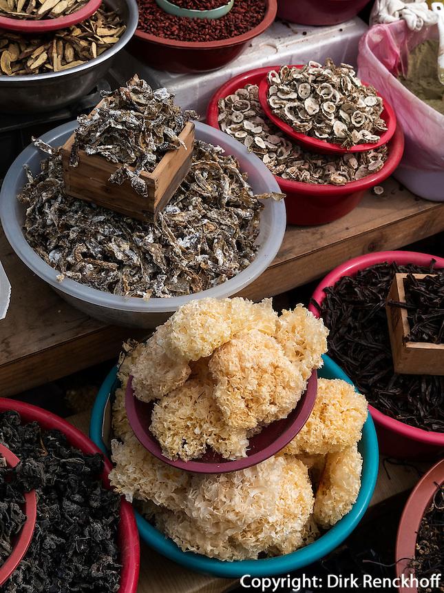 Verkauf von traditioneller Medizin beim Tempel Heinsa nahe Daegu, Provinz Gyeongsangnam-do, S&uuml;dkorea, Asien<br /> traditional medicine at temple heinsa near Daegu,  province Gyeongsangbuk-do, South Korea, Asia