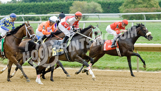 Martha's Moon winning The Blue Hen Stakes at Delaware Park on 9/29/12