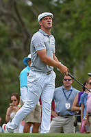 Bryson DeChambeau (USA) watches his tee shot on 12 during round 3 of The Players Championship, TPC Sawgrass, at Ponte Vedra, Florida, USA. 5/12/2018.<br /> Picture: Golffile | Ken Murray<br /> <br /> <br /> All photo usage must carry mandatory copyright credit (&copy; Golffile | Ken Murray)