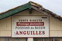 France, Gironde (33), Bassin d'Arcachon, Le Cap-Ferret, Détail enseigne cabanon d'un pêcheur // France, Gironde, Bassin d'Arcachon, Le Cap Ferret, Detail of a fisherman teaches shed
