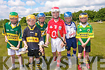 CLASH OF THE ASH: Children can enjoy a fun day out at Muckross Traditional farms this month with the launch of a Juvenile Hurling tournament in memory of Dr Bill Mangan which has been organised to promote hurling and other traditions of our country and county.