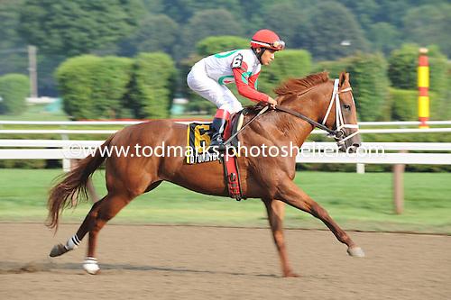 D'Funnybone wins Saratoga Special