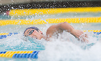 Berkeley, CA - February 2, 2017: Cal Bears Men's Swim team vs USC Men's Swim team at Spieker Aquatic Complex  Final score, Cal Bears 177, USC 109