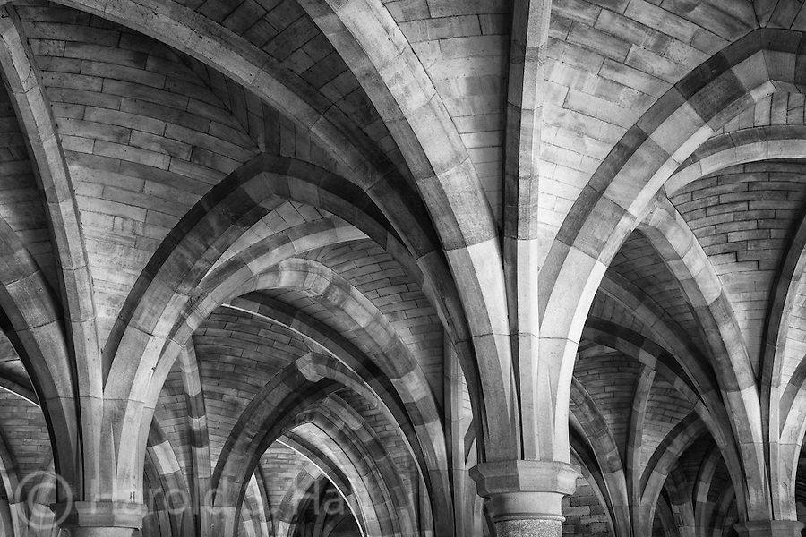 These Gothic white sandstone columns build in the 1870's are located on Glasgow University under Bute Hall where exams are held.  A very old University with lots of history and culture.