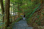 Woman on a path, Fillmore Glen State Park, Moravia, New York, USA