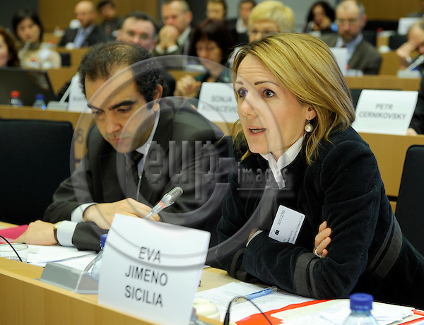 Brussels-Belgium - 30 January 2009 -- THE EUROPEAN QUALIFICATIONS FRAMEWORK LINKING TO A GLOBALISED WORLD, an international conference held by the European Training Foundation (ETF) at the European Parliament; here, session 3 / open discussion with a contribution of Eva Jimeno Sicilia -- Photo: Horst Wagner / eup-images