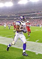 Dec 6, 2009; Glendale, AZ, USA; Minnesota Vikings running back Adrian Peterson against the Arizona Cardinals at University of Phoenix Stadium. The Cardinals defeated the Vikings 30-17. Mandatory Credit: Mark J. Rebilas-