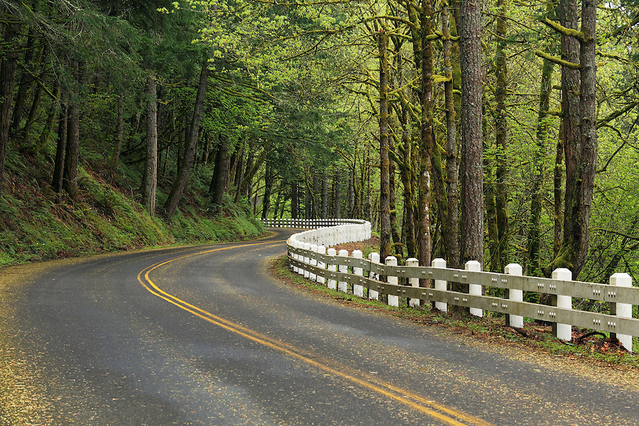 Scenic Highway 30 curving through forest near Portland, Oregon, USA