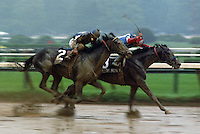 Willow Hour wins the Travers over Pleasant Colony, 1981.