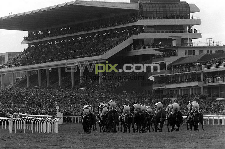 Pix:Michael Steele/SWpix... Horse Racing. Cheltenham, 1989...COPYRIGHT PICTURE>>SIMON WILKINSON..Cheltenham.