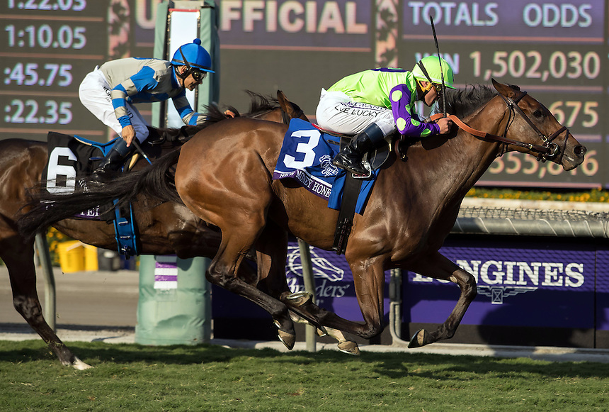 ARCADIA, CA - NOV 4: New Money Honey #3, ridden by Javier Castellano, wins the Breeders' Cup Juvenile Fillies Turf at Santa Anita Park on November 4, 2016 in Arcadia, California. (Photo by Zoe Metz/Eclipse Sportswire/Breeders Cup)