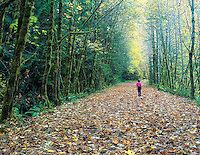Young girl walking on road covered in fall color. Near Oakridge, Oregon.