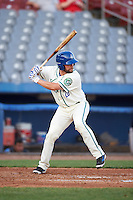 Hartford Yard Goats designated hitter Jackson Williams (20) at bat during the second game of a doubleheader against the Trenton Thunder on June 1, 2016 at Sen. Thomas J. Dodd Memorial Stadium in Norwich, Connecticut.  Trenton defeated Hartford 2-1.  (Mike Janes/Four Seam Images)