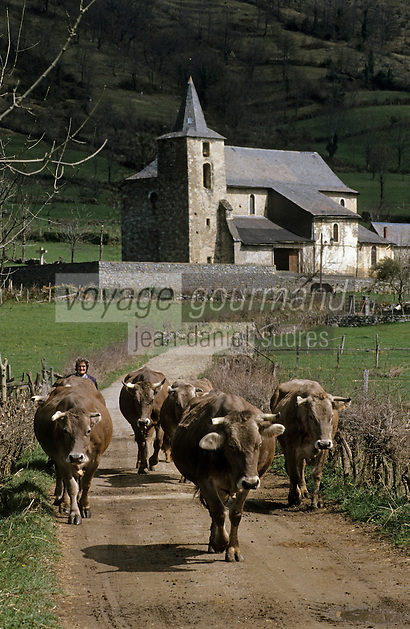 Europe/France/Midi-Pyrénées/09/Ariège/Balaguères-Couserans : Troupeau et vacher<br /> PHOTO D'ARCHIVES // ARCHIVAL IMAGES<br /> FRANCE 1980