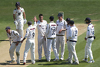 Yorkshire players congratulate Duanne Olivier after taking the wicket of Kent's Matthew Milnes for 0 during Kent CCC vs Yorkshire CCC, Specsavers County Championship Division 1 Cricket at the St Lawrence Ground on 15th May 2019