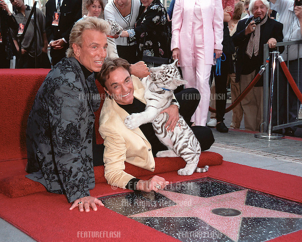 23SEP99:  Illusionists SIEGFRIED (left) & ROY with one of their rare white tiger cubs on Hollywood Boulevard where they were honoured with the 2,144th star on the Hollywood Walk of Fame..© Paul Smith / Featureflash
