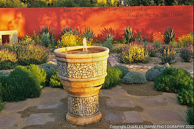 Gardener Sally Shoemaker turned up the color in her Phoenix garden by adding a brightly colored red wall to compliment a southwester fountain and some spiky agaves.
