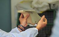 San Mauro Pascoli ( Forlì-Cesena)  Distretto Italiano della calzatura. italian footwear district.Cercal : centro ricerca e scuola internazionale calzaturiera. .Research Centre and International  Footwear School, traning school, scuola professionale