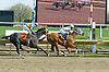 Veteran Georgie winning at Delaware Park on 4/25/09