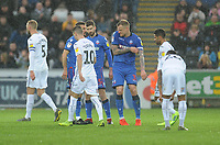 Bolton Wanderers' David Wheater (right) hands over the captains armband after being sent off<br /> <br /> Photographer Kevin Barnes/CameraSport<br /> <br /> The EFL Sky Bet Championship - Swansea City v Bolton Wanderers - Saturday 2nd March 2019 - Liberty Stadium - Swansea<br /> <br /> World Copyright © 2019 CameraSport. All rights reserved. 43 Linden Ave. Countesthorpe. Leicester. England. LE8 5PG - Tel: +44 (0) 116 277 4147 - admin@camerasport.com - www.camerasport.com