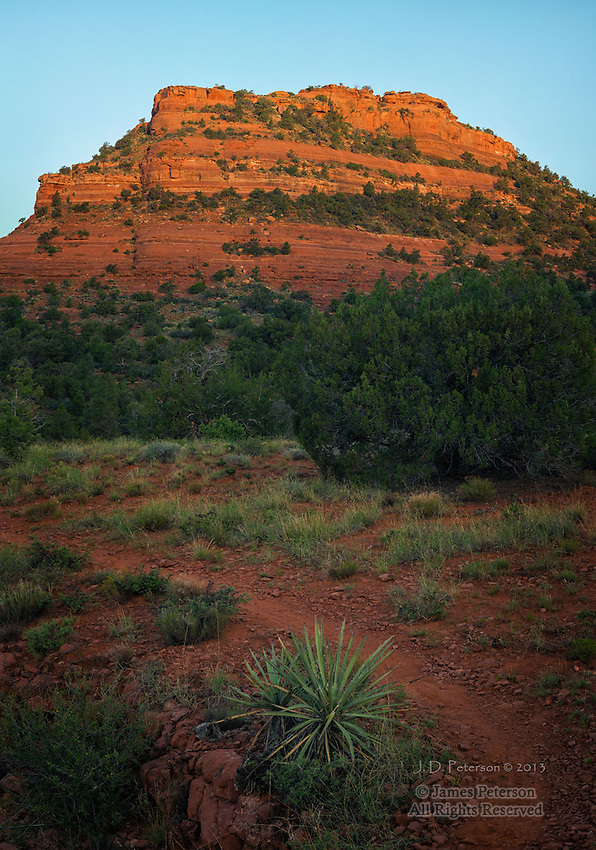 First Light on Mescal Mountain, Arizona