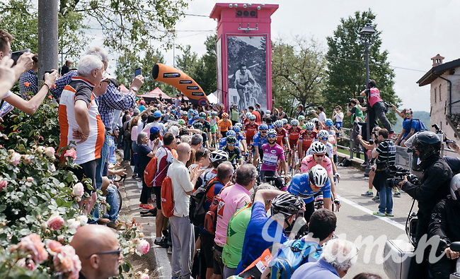 riders rolling out for the stage start in the tiny birth town of Fausto Coppi: Castellania<br /> <br /> 100th Giro d'Italia 2017<br /> Stage 14: Castellania &rsaquo; Oropa (131km)