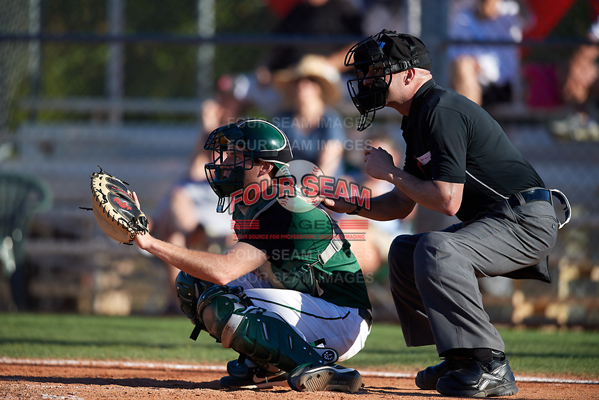 Dartmouth Big Green catcher Bennett McCaskill (18) and the home plate umpire await the pitch during a game against the Northeastern Huskies on March 3, 2018 at North Charlotte Regional Park in Port Charlotte, Florida.  Northeastern defeated Dartmouth 10-8.  (Mike Janes/Four Seam Images)