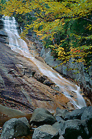 Gray birch and Ripley Falls on Avalanche Brook<br /> Crawford Notch State Park<br /> White Mountains<br /> New Hampshire, New England