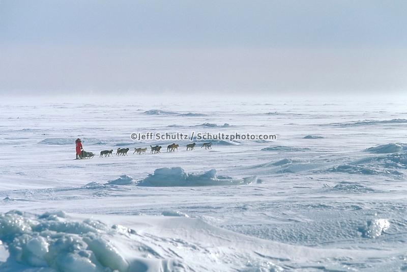 S. Butcher Mushing Elim Ckpt Norton Snd 1991 Iditarod AK