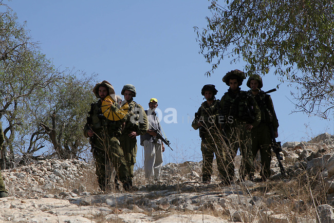Israeli soldiers stand guard as Jewish settlers in the agricultural fields in the village of Burin, near Nablus in the West Bank , Monday, Sept. 20,2010 . Palestinian farmers said the Israelis settlers from the settlement on Yizhar attack farmers and wounded one of the farmers . Photo by Wagdi Eshtayah