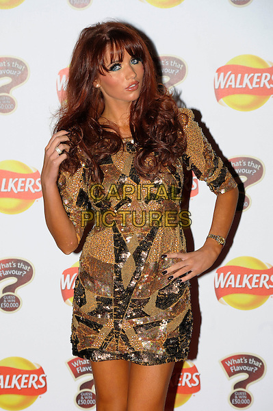 Amy Childs.At the Walkers Crisp Launch Party, Roast Restaurant, London, England, UK, January 19th 2012..half length gold dress mini sleeves hand on hip tanned orange fake tan  brown beige sequined sequin beaded .CAP/CAS.©Bob Cass/Capital Pictures.