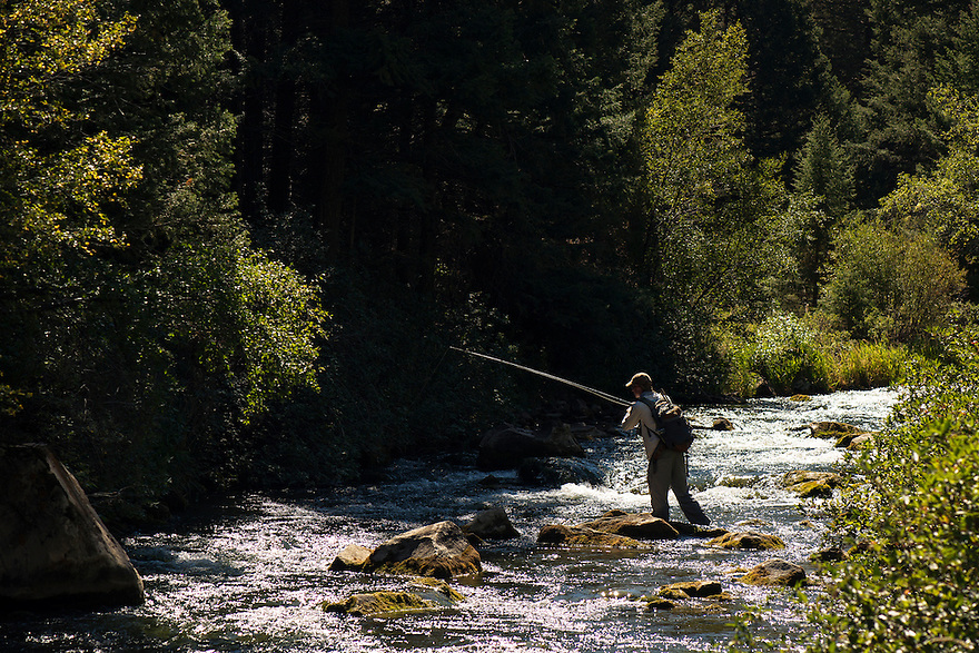 A fly-fisherman fishes pocket water on Big Sheep Creek near Dillon, Montana.