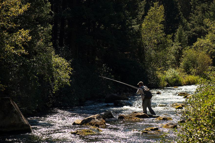 A fly-fisherman fishes pocket water on Big Sheep Creek near Dillon, Montana.