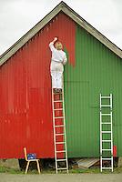 Woman on ladder paints building red, Kabelvåg, Lofoten islands, Norway