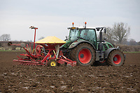 Drilling Spring Barley in late January following sugar beet, dry and mild conditions in South Lincolnshire have allowed farmers to drill early.<br /> &copy;Tim Scrivener Photographer 07850 303986<br />      ....Covering Agriculture In The UK....